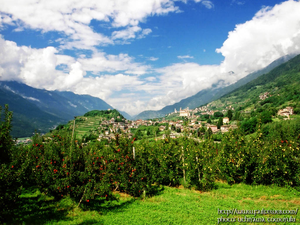 北イタリアりんご園 壁紙写真